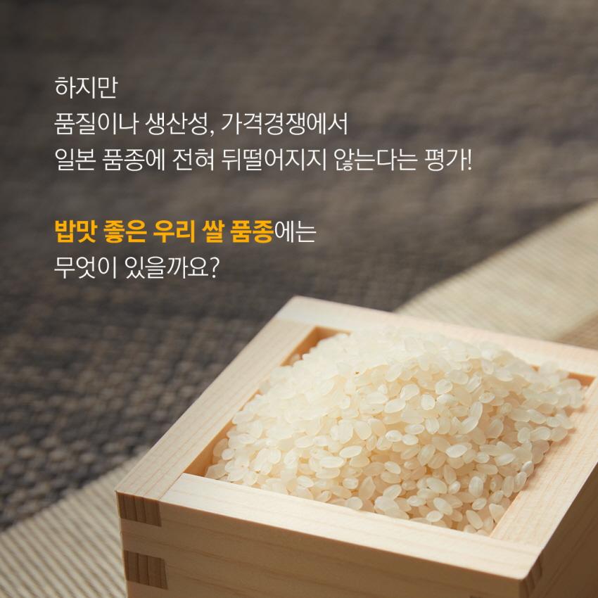 쌀이미지 3